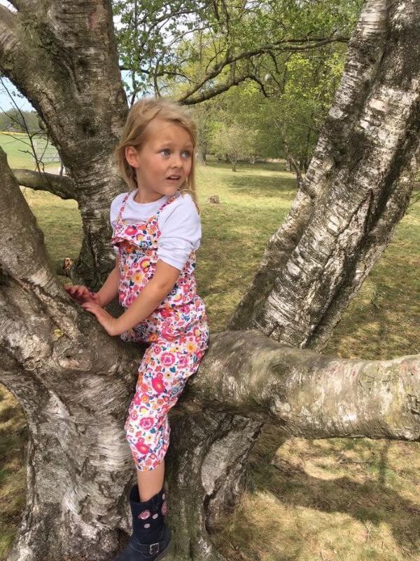 Rinke van Campen zit in een boom