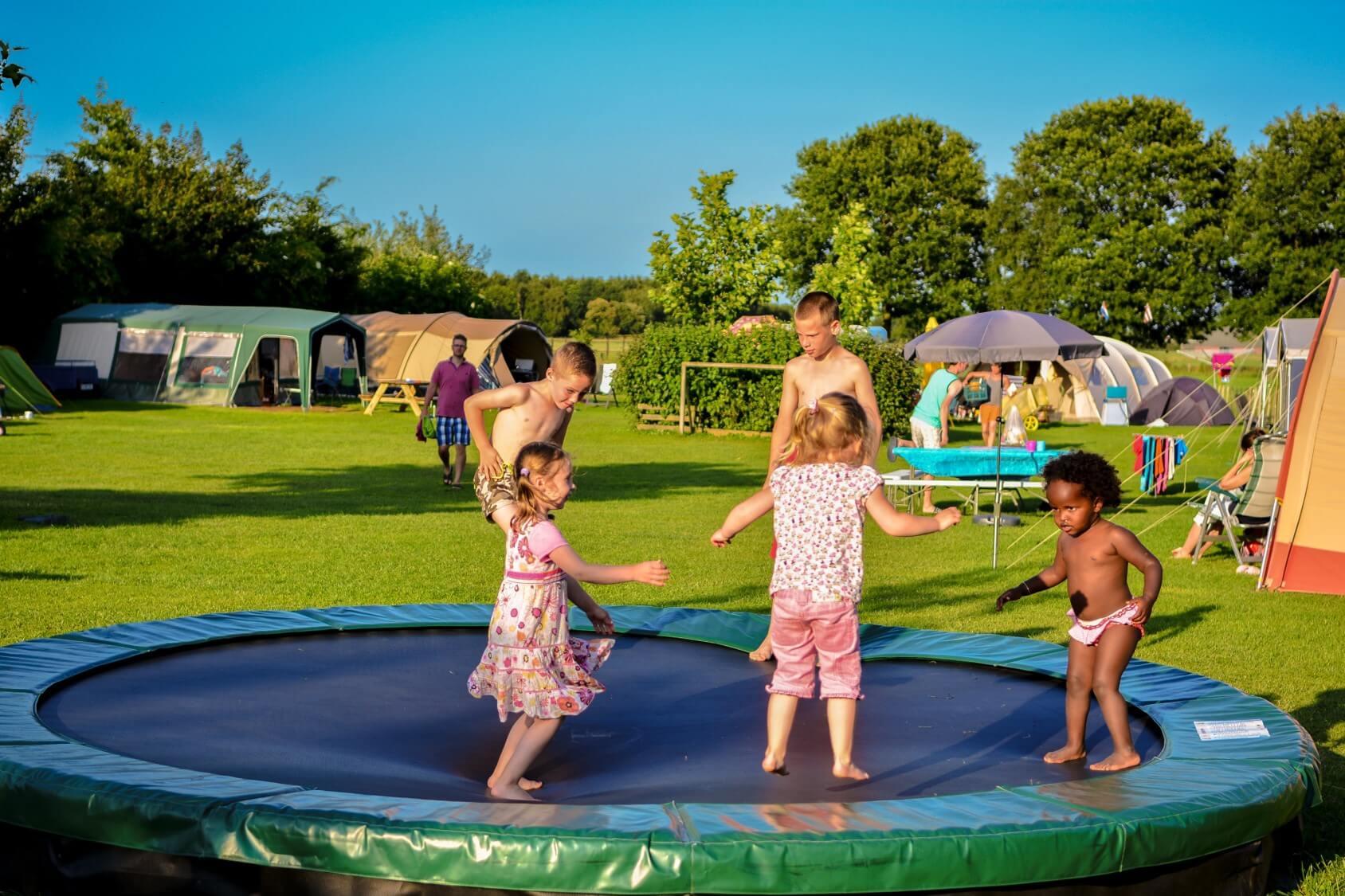 De kindvriendelijke kleine camping in Drenthe